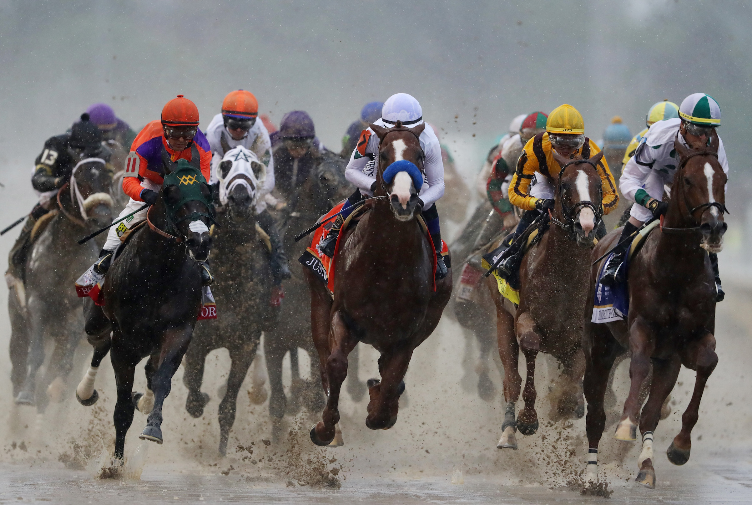 Horse betting - How does a horse falling affect its next race?